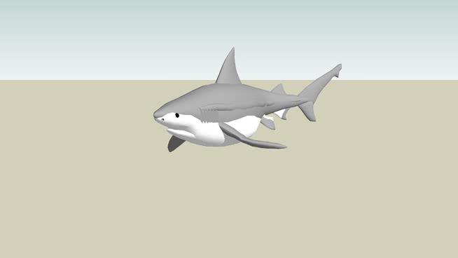 牛鲨 锤头鲨鱼 飞机 战机 大白鲨 客机