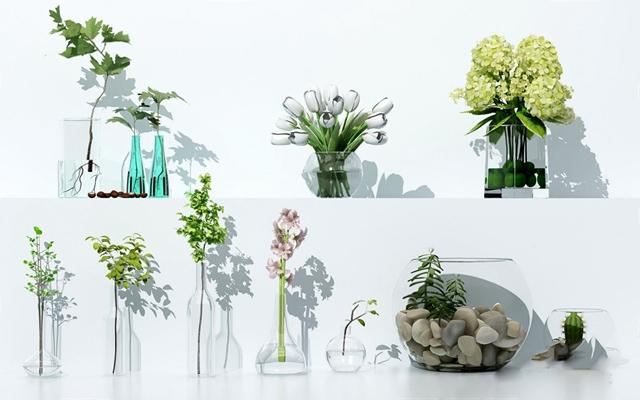 花艺花瓶组合 花瓶 玻璃瓶 陈设品 摆件 花朵