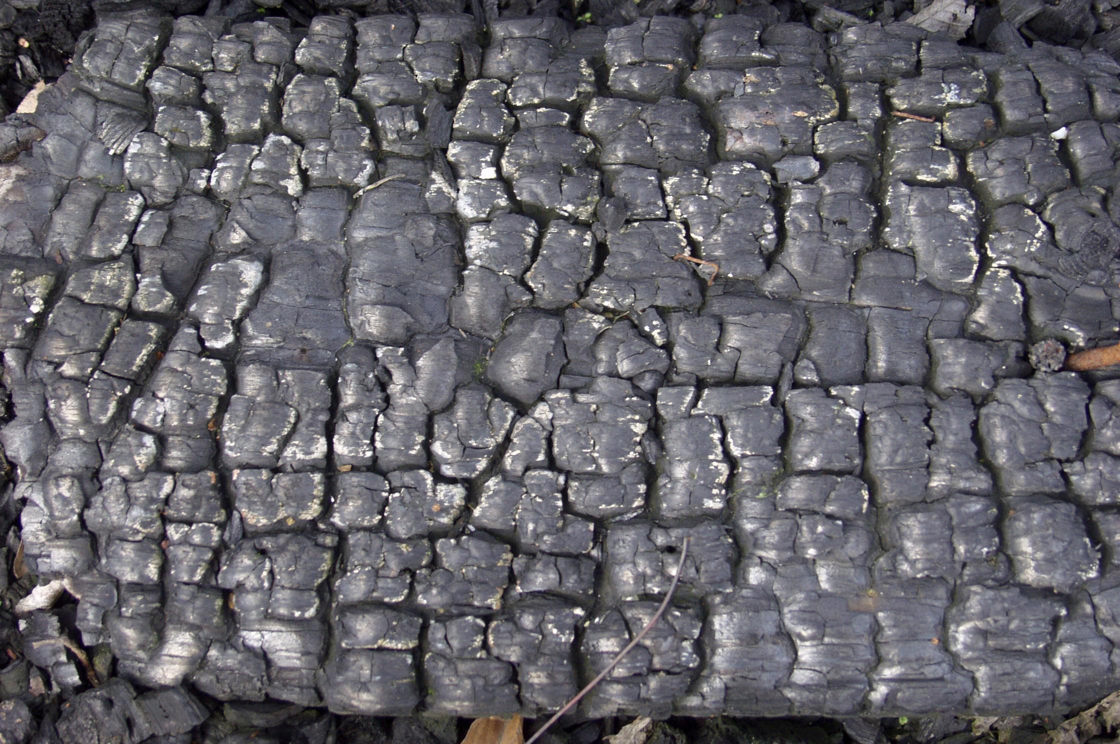 木材-燃烧过的-木梁(45)