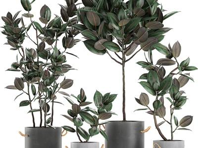 现代盆栽摆件