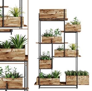 现代植物花架 现代盆栽盆景 植物花架 盆栽花草 木花盘 铁艺花架