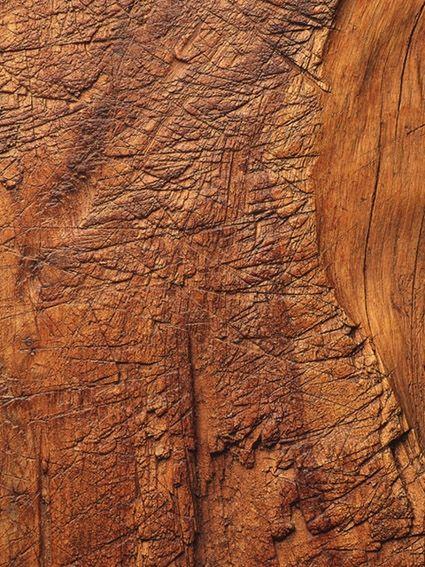 木纹木材-树皮 008