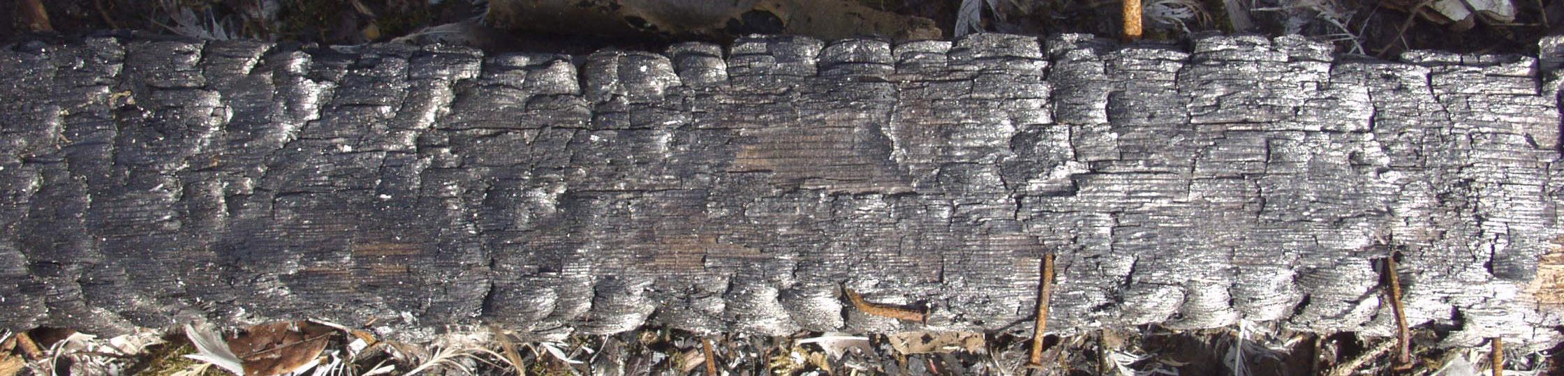 木材-燃烧过的-木梁(8)