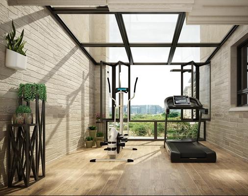 现代阳台健身房盆栽组合3D模型