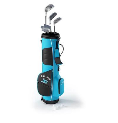 现代高尔夫球袋运动器材3d模型
