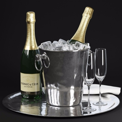 现代香槟冰桶冰块3D模型