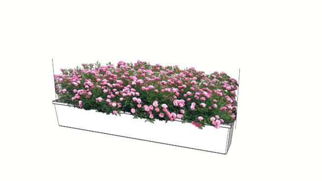 花盆粉红花 其他 饰品 植物 纸盒箱 花盆