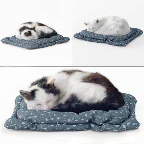 现代宠物猫动物3D模型