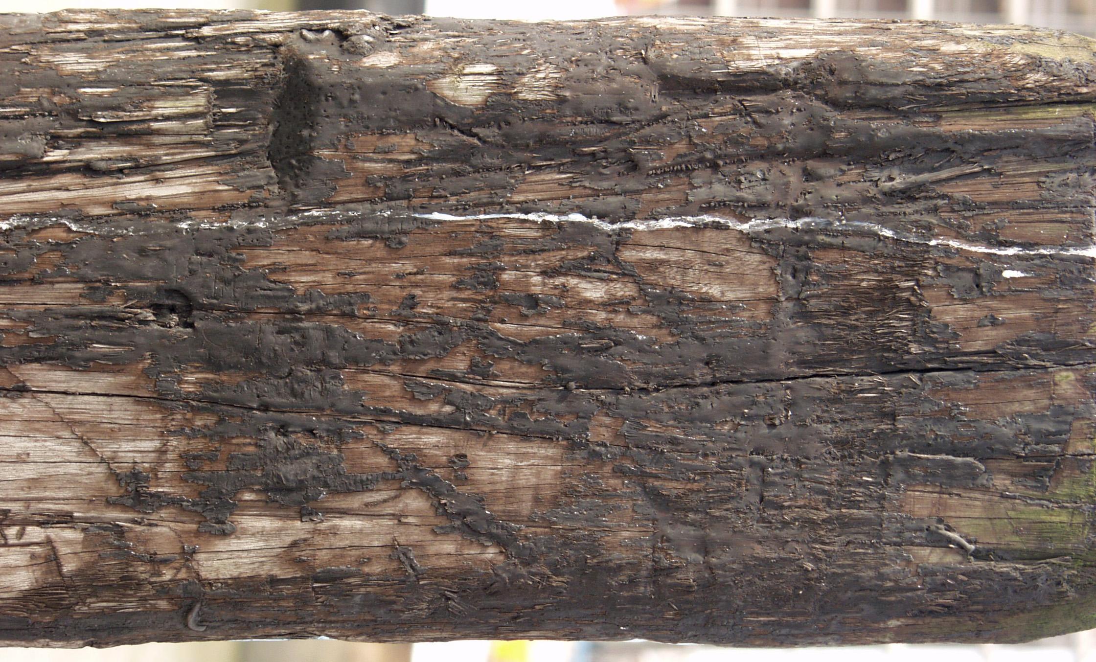 木材-残旧木(65)