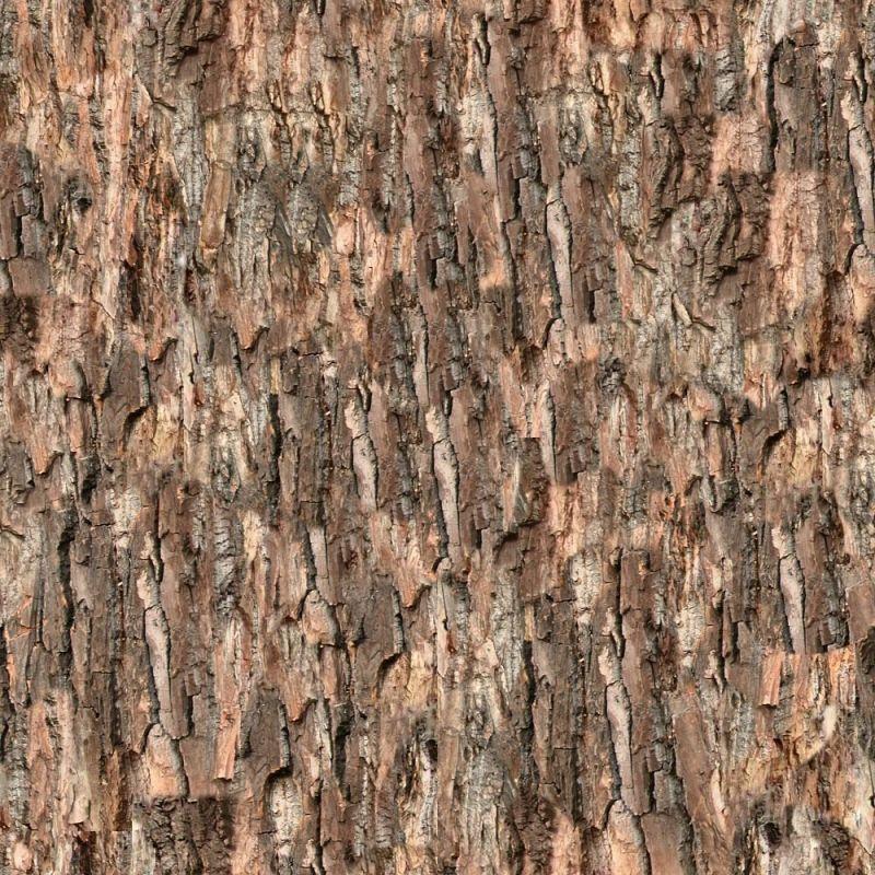 木纹木材-树皮 043