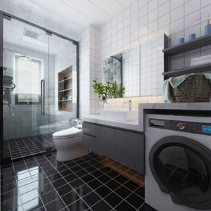 现代黑白灰卫生间 现代卫浴 洗手台 坐便器 淋浴间 镜子 洗漱用品 绿植