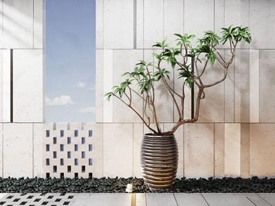 新中式植物盆栽組合 新中式盆栽盆景 植物 花盆 背景墻
