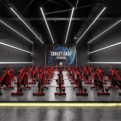 现代健身房 现代健身房 运动单车