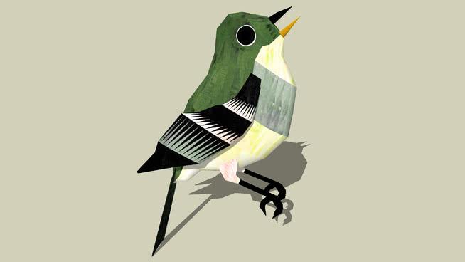 黄腹纹霸鹟 鸟 动物 鸢 战机 鹈鹕