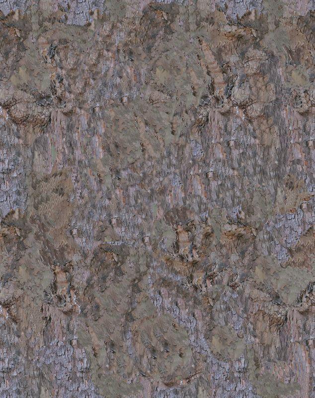 木纹木材-树皮 049