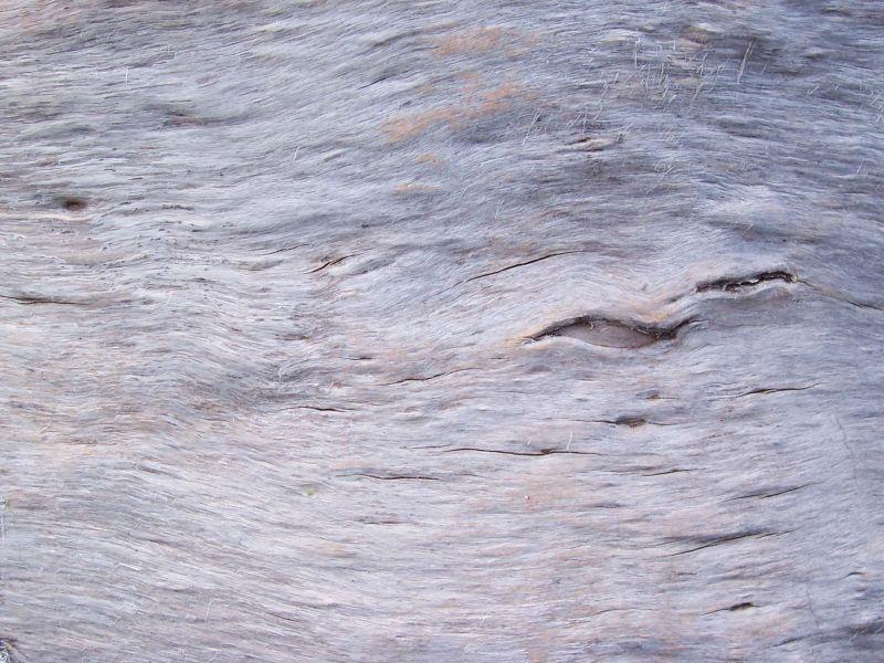 木纹木材-树皮 140