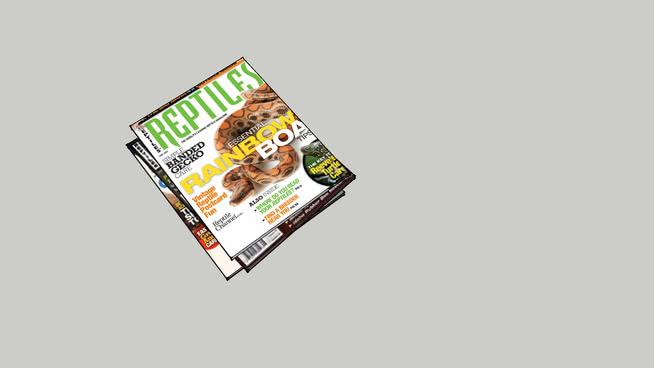 爬虫类杂志 饰品 笔记本电脑 纸牌 钱 香烟