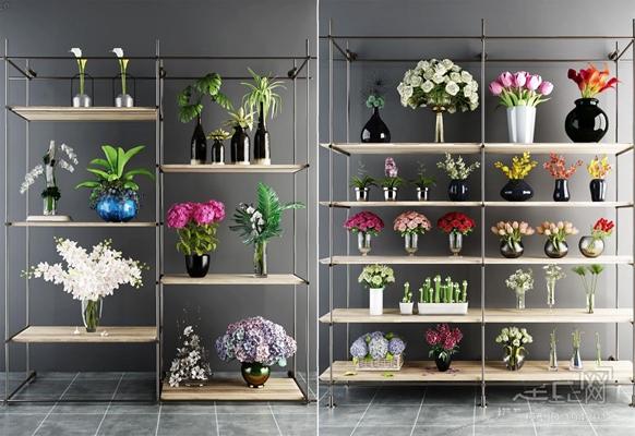 绿植花架组合 盆花 绿植 花架