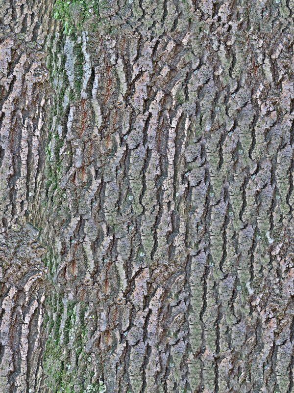 木纹木材-树皮 062