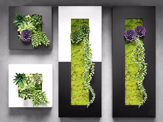 现代多肉绿植挂画组合 现代绿植 挂画