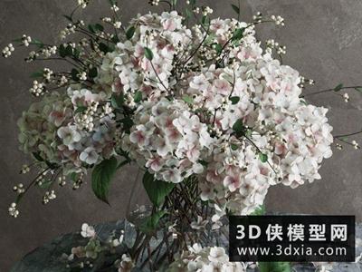 植物裝飾花