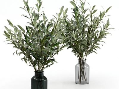现代绿植花瓶3d模型
