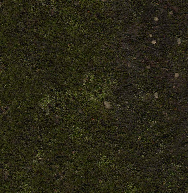 其他杂项-植物纹理 004