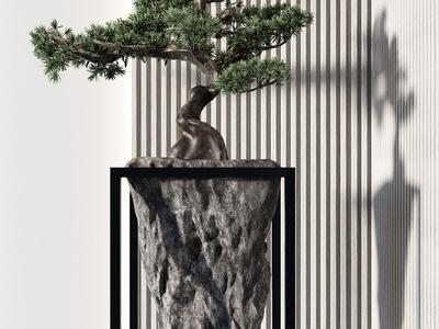 新中式松树盆景3d模型