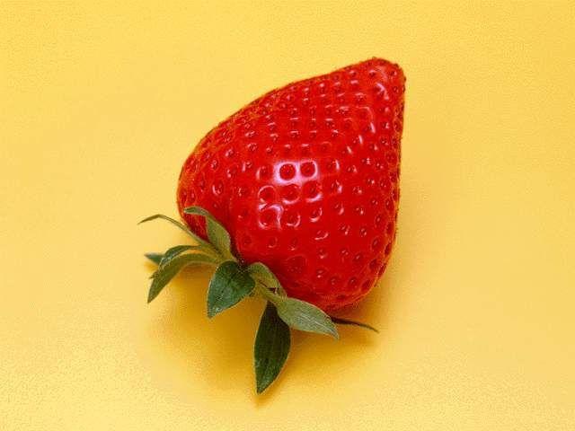 其他杂项-水果贴图 019