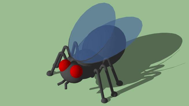 苍蝇 热气球 其他 降落伞 滑雪板 苍蝇