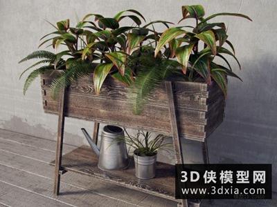 木质花架植物组合