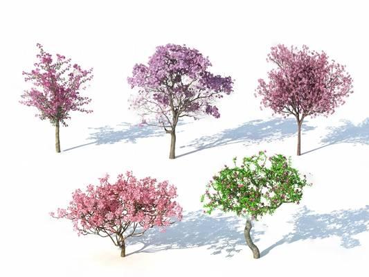 树3D模型下载