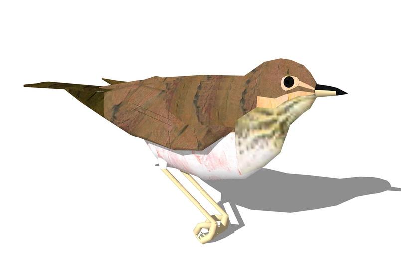 小鸟SU模型