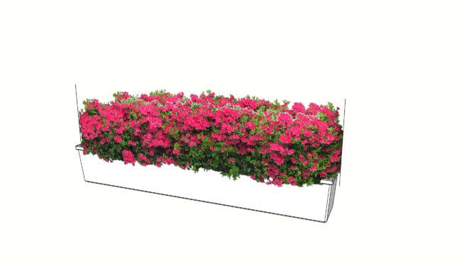花盆红花 其他 抹布 饰品 植物 画