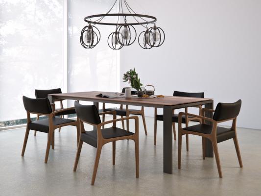 北�W餐桌方法和�ο刹煌�椅 吊�� 植物