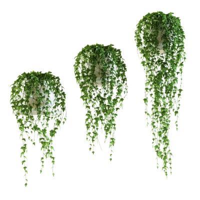 现代吊兰绿植盆栽