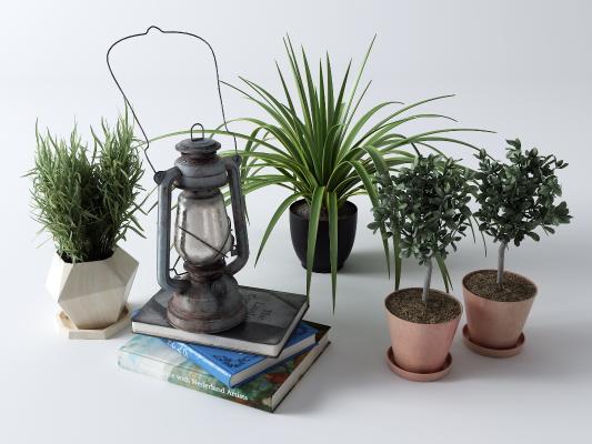 现代盆栽 煤油灯 书籍