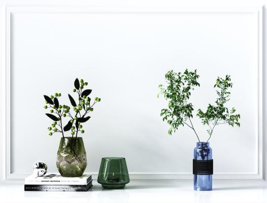 花瓶,植物,摆件,现代绿植装饰,时尚装饰,卧室摆件,客厅摆件