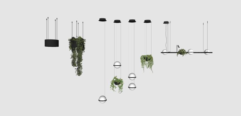 现代植物吊灯