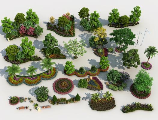 现代植物 景观花草 植物组团 景观树