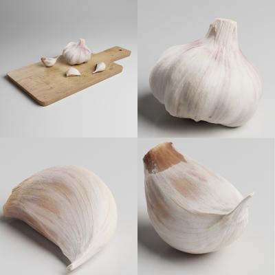现代大蒜 蔬菜