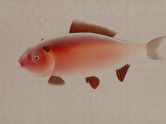 新中式鱼儿装饰挂画