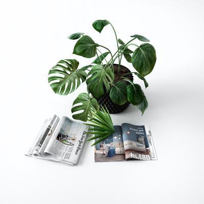 現代書籍 花瓶 雜志