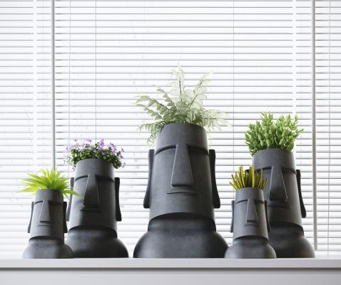 現代植物盆栽組合