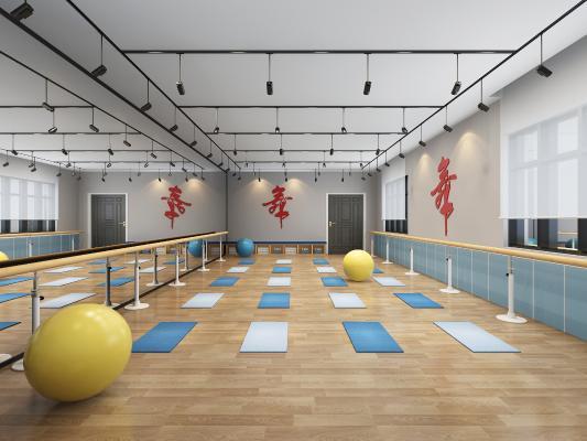 现代舞蹈教室 垫子 瑜伽球