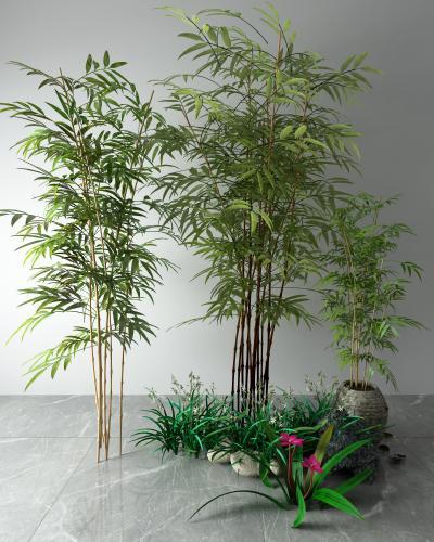新中式风格植物盆栽 竹子 草