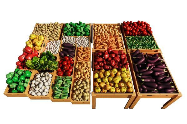 现代蔬菜大全组合