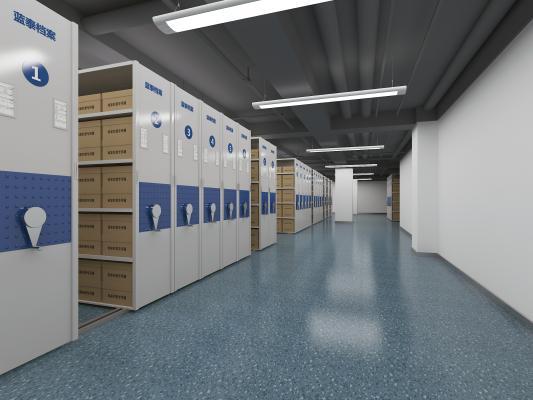 现代风格档案室 货柜 档案
