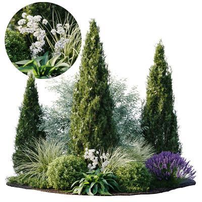 植物堆 花丛