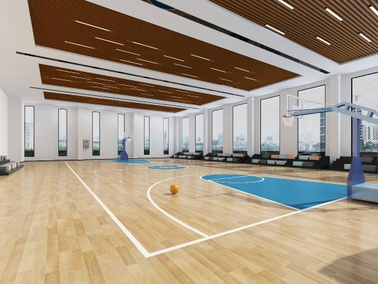 现代室内篮球场 篮球框 看台